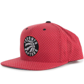 The Toronto Raptors Dotted Snapback
