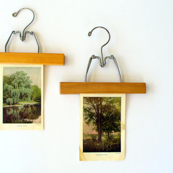 Etsy Transaction -          Vintage Wood Hanger Clamp with Botanical Tree Plate Print - Instant Wall Art