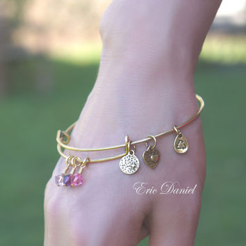 Personalized Birthstone Bangle In Silver Or Gold Tone Choose Yo Jewelry Alex And Ani