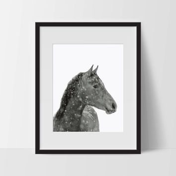 The Horse, Black and White Wall Art, Modern Art