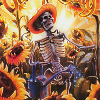 Grateful Dead Sunflower Harvest Poster 24x36
