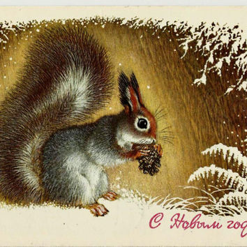 Christmas, New Year, Squirrel, Winter, Vintage  Russian Postcard 1977