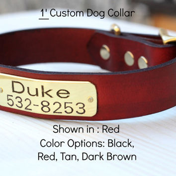 "Leather Dog Collar with Custom name and Info plate 1"" width"