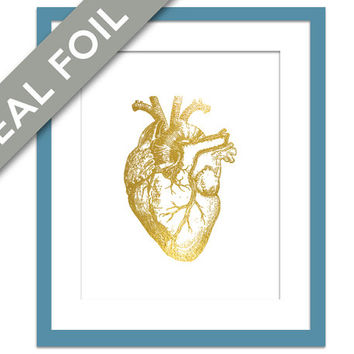 Human Heart Anatomical Gold Foil Art Print - Real Gold Foil - Anatomy Wall Art - Anatomical Wall Art - Valentine's Day - Medical Art