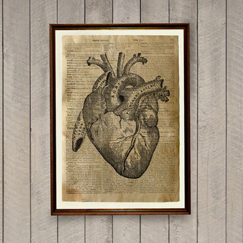 Old dictionary print Heart illustration Anatomy poster n1