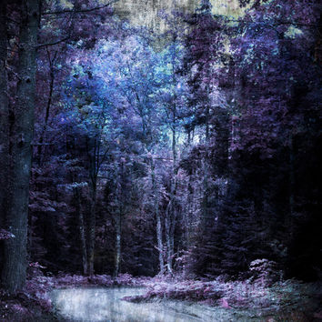 Art, Photography, Digital, Art, Photography, Wall Art, Wall Decor, Woods, Forest, Enchanted Path, Pink, Purple, Blue, Lavender, Fairy Dust