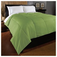 Aeolus Down Full/Queen Nylon Down Alternative Comforter, Green