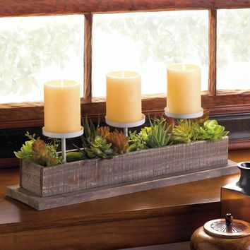 FAUX SUCCULENT PLANTS CANDLE DISPLAY