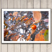 Fine art photography, tree photography, tree art, nature photography, fruit dreamy orange natural art wall decor spring springtime leaves