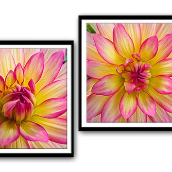 Instant Download Photography, Pink Yellow Dahlia, Nature Photography, Downloadable Image,Downloadable Digital PrintPrintable Print,Set of 2