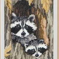 Framed Cross Stitched Racoons in a Forest