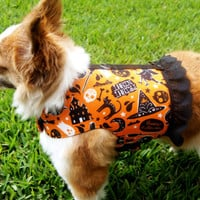 Orange Halloween Dog Harness with Black Lace Ruffle (Medium)