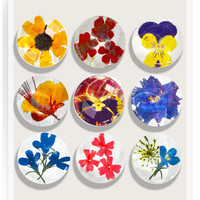 9 Pressed Flowers Superstrong  Glass Magnet Set