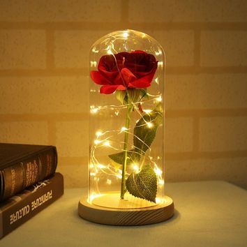 glass plant terrarium roses flowers Beauty and the Beast Red enchanted Rose flower lamp Dome rose flower indoor decoration Gifts