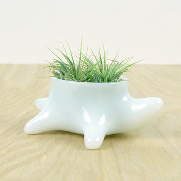 Milk Glass Turtle Container // Candle Holder