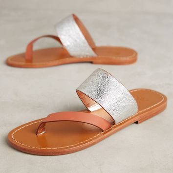Sanchita Berberis Metallic Sandals