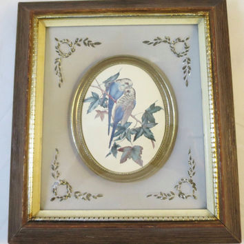 Vintage Blue Bird Picture French Provincial Oval Center Blue Parakeets Gold Ormolu Corner Matt Shadow Box Frame Finish  9.5 x 10.5 inches