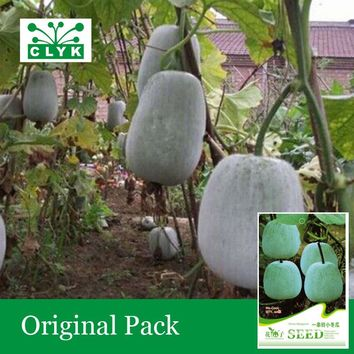 1 original pack 20pcs / bag white gourd Seeds, Chinese Green Vegetable Winter Melon Seeds