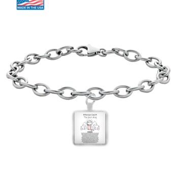 Persian Cats The Best Drug Funny Therapy Bracelet For Cat Moms Who Love Persians Silver Kitty Lover Jewelry + Surprise Bonus