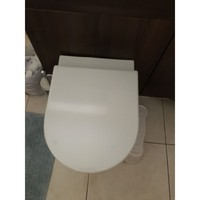 Ideal Standard and Armitage Shanks Toilet Seat soft Close E002