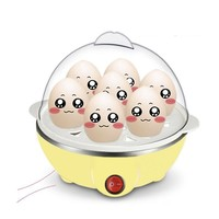 Electric Egg Cooker And Boiler