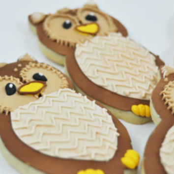 Owls -  Autumn Cookies - Decorated Iced Sugar Cookies - Fall - Forest - Half a Dozen
