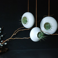 Set of three Round Hanging Air Planters by InglesidePottery