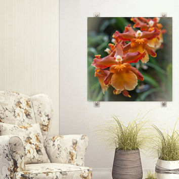 Orchid Photograph - Botanical Print - Green Orange