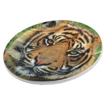 Tiger Paper Plates 9 Inch Paper Plate