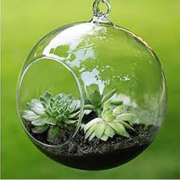 Terrarium Ball Globe Shape Clear Hanging Glass Vase Flower Plants Terrarium Container Micro Landscape DIY Wedding Home Decor