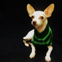 Dog Sweater Green Stripes Pet Chihuahua Small Animal Outfit Soft Warm