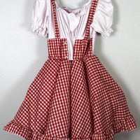 Little Red Riding Hood or Dorothy OZ Costume Dress Crinoline Halloween Sz 10