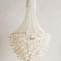 Hand-Knotted Chandelier