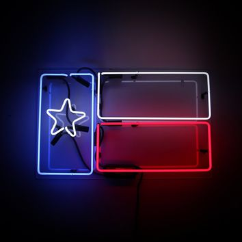 Texas Flag Neon Sign