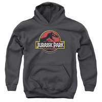 JURASSIC PARK/STONE LOGO-YOUTH PULL-OVER HOODIE - CHARCOAL -