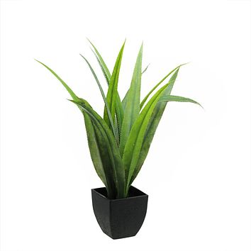 "21.5"" Artificial Green Agave Succulent Plant in a Decorative Black Pot"