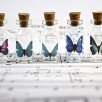 Handmade delicate butterfly glass terrarium necklace with waxed cotton cord, variety of color, glass bottle pendant, message in a bottle.