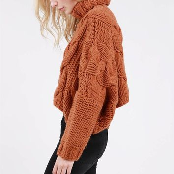 Turtle Sweater - Copper by POL Clothing