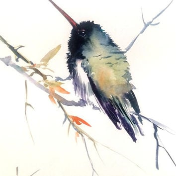 Dark Colored Hummingbird, Original watercolor painting,. 8 X 10 in, hummingbird lover art, dark green black