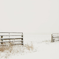 Fine Art Photography Snow Art Winter Art Snow Landscape Art Photography 8x12 Fine Art Photograph