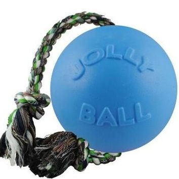 """Jolly Pets Romp-N-Roll Ball Dog Toy 6"""" Blueberry"""