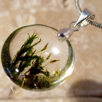 Orthotrichum sp. Necklace,  bryophyte pendant, moss, woodland, forest, plant jewelry, leaf jewellery