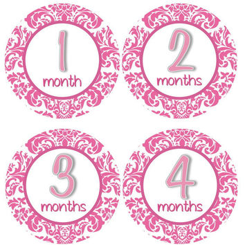 Baby Month Stickers Monthly Onesuit Stickers Girl Hot Pink Damask First Year Onesuit Stickers Girl Baby Shower Gift Photo Prop -Beth