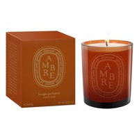 diptyque Ambre Large Scented Candle | Nordstrom