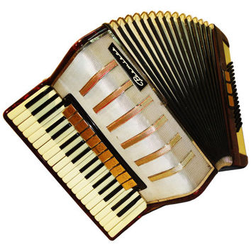 German Premiere, 96 Bass, 14 Registers, Piano Accordion Instrument, 481
