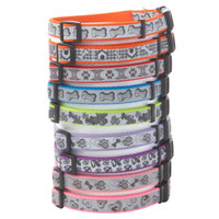 Coastal Pet Products Personalized Reflective Nylon Collars for Dogs - Summer PETssentials - Dog - PetSmart