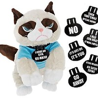 Grumpy Cat Life Size Plush with Shirt and Accessories — QVC.com