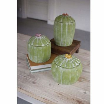Set Of 3 Clay Cactus Canisters With Flower Tops