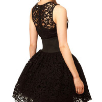 Black Lace Sleeveless Balloon Dress