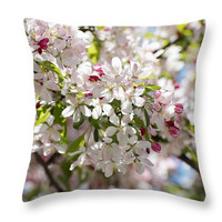 Apple Flowers Pillow. Apple Bloom Cushion. Outdoor seat cushion floral. Photo Art Throw Pillow Botanical Floral Art. Spring Pillow.